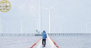 Nên đi đâu khi tới Bạc Liêu? Cánh đồng quạt gió - Địa điểm du lịch ở Bạc Liêu nổi tiếng nhất